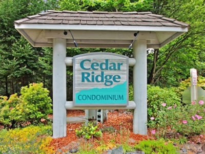 cedar ridge hindu singles Cedar ridge, california 95924 i have been a licensed mft for 29 years i was the clinical director for two different residential treatment programs and have supervised over 100 interns.